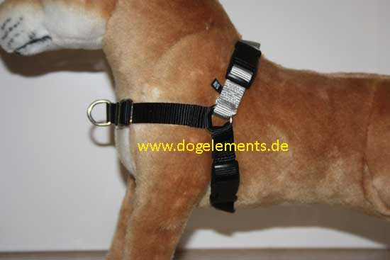 Easy Walk Professional Harness - Medium 51-71 cm/20mm