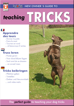 Hunde DVD Tricks beibringen